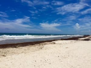 Top 5 things for tourists to know about Tulum in September