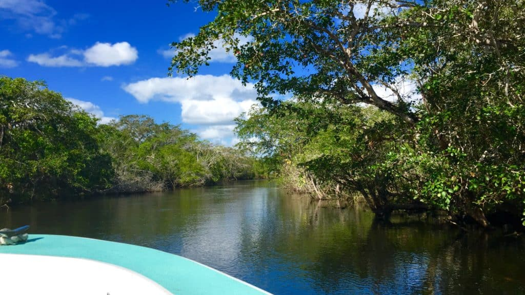 view a boat on the north river in belize from our lamanai tour