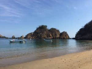 Puerto Angel, Mexico: Sea life, beaches and good vibes 2