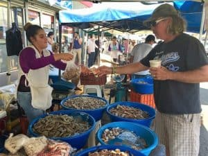 Buy fresh shrimp from the Shrimp Ladies in Mazatlan