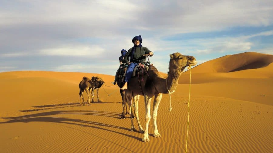 We're on camels in the Sahara!