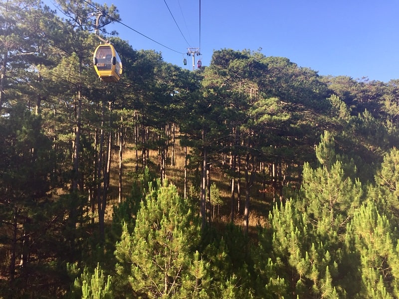 cable cars pull passengers over high-elevation forests in dalat