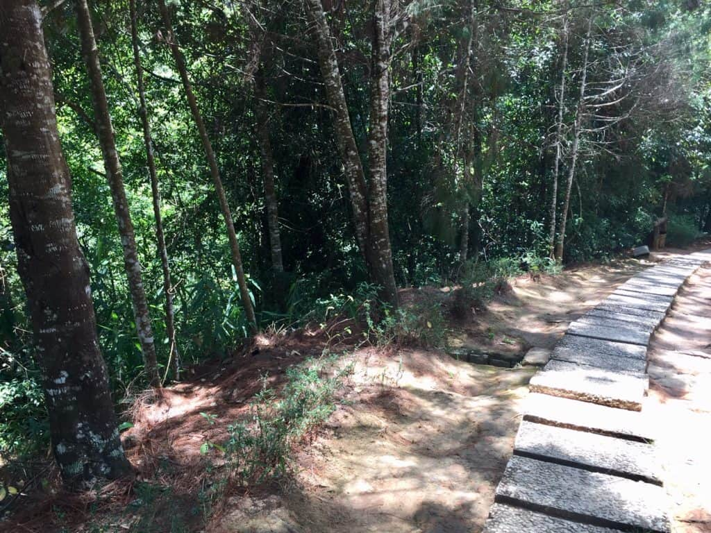 the trail on the hike down to the dalat waterfall features wooden plank steps