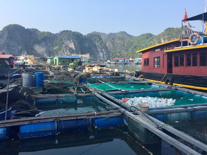 cat ba island floating village