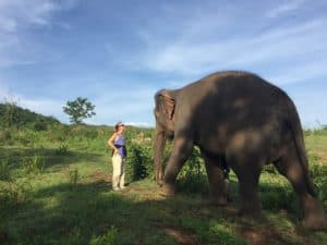 First-hand account from Thom's Pai Elephant Camp