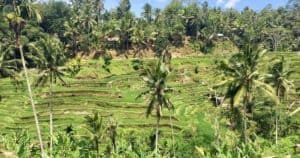 6 memorable sites near Ubud