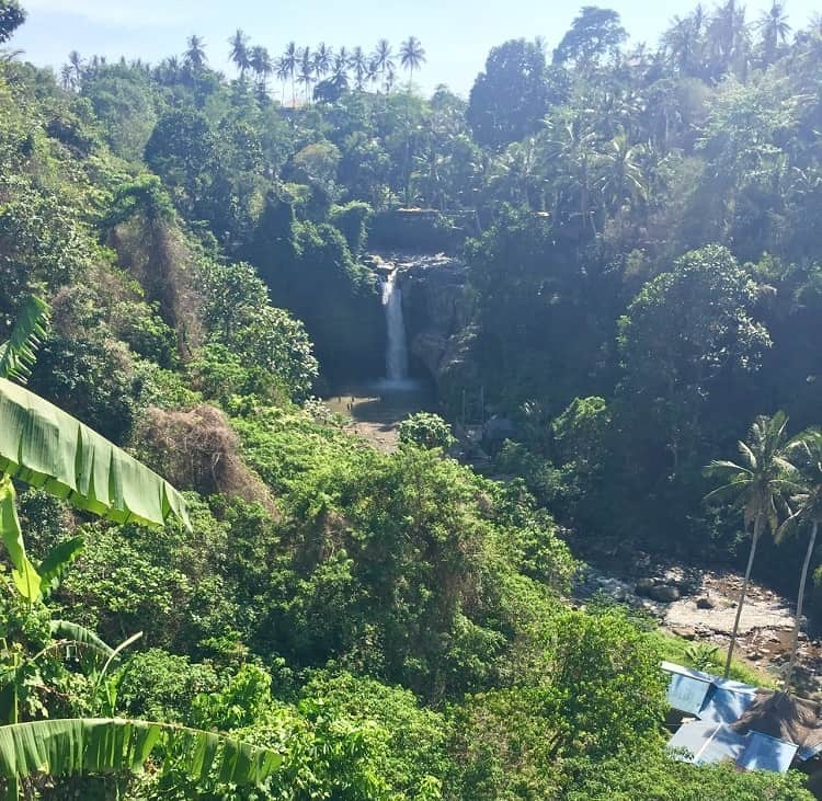 one of the sites near ubud worth visiting is the Tegunungan waterfall in the middle of lush jungle