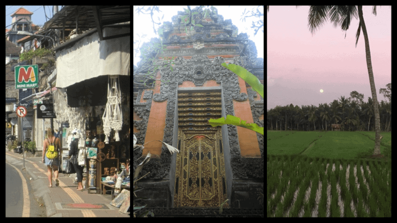 tourist street in Ubud, temple shot, and rice field just outside the city center