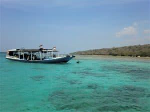 Bali diving: 2 tanks at Menjangan Island for a great price