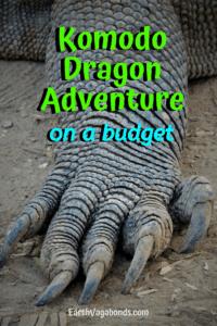 Remarkable Komodo Island adventure