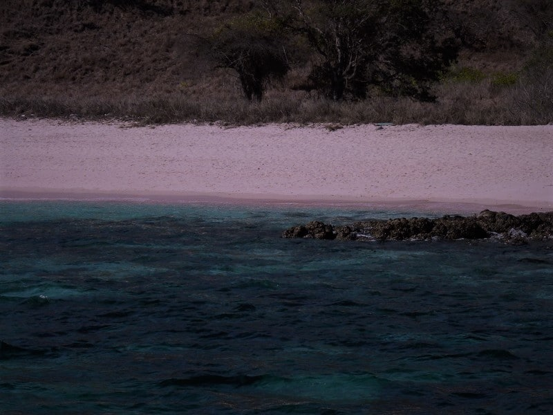 pink beach and blue water at komodo national park in indonesia