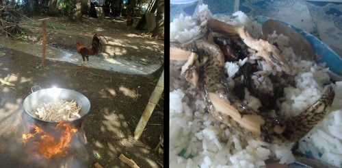 cooking chicken feet and eels and rice - what the men eat after adventure cycling around liloan