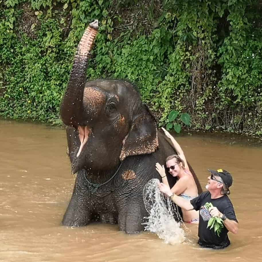 Thailand elephant is happy in the river playing with Earth Vagabonds.