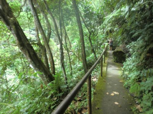 walkway with concrete base at casaroro falls
