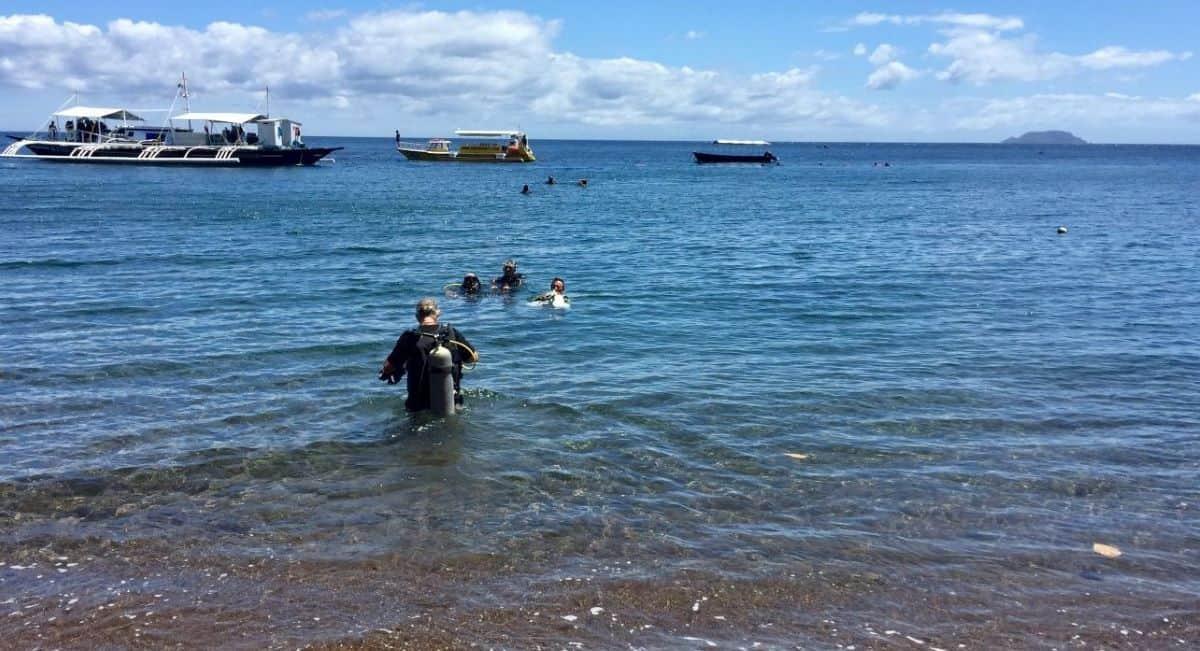 dauin marine sanctuary