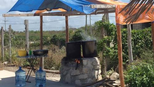 Pandemic throws tourism workers into lurch -- hot pots over fires cooking food