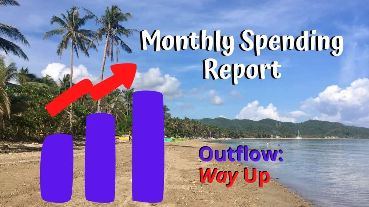 Monthly Expense Report June 2020