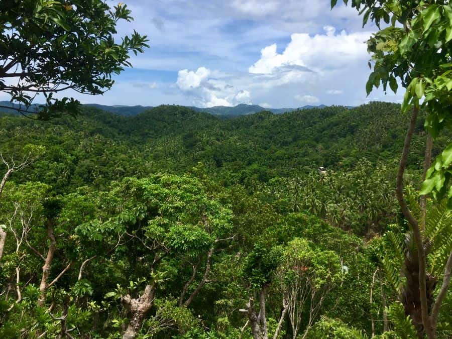 The vast jungle view from Tuhaw Hills on mainland Malay, Aklan, Philippines.
