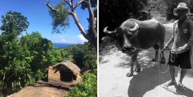 left, a hut seen on a pandemic walk with the ati up the mountainside; right, an ati man with a bull in a black and white photo