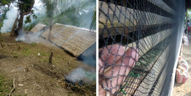 Left, burned foliage in front of the chicken coop on Ati mountain; right, netting to prevent snakes from attacking chickens.