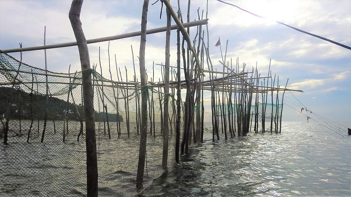 Fishing, farming, and feeding families